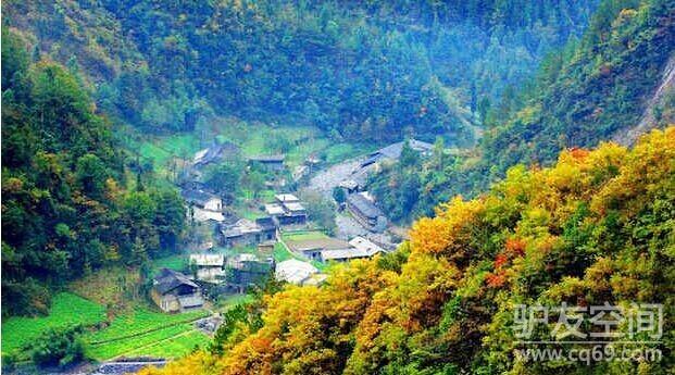 【绿野户外】金秋--城口大巴山红叶之旅!(旅游大巴)